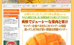 完熟マンゴー通販